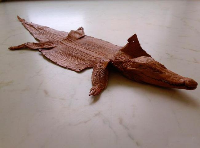 Шкура крокодила без отделки запрещена к вывозу из Тайланда