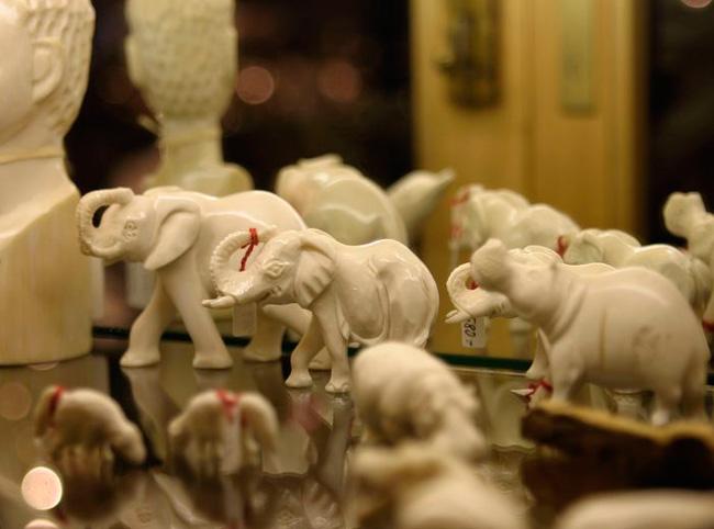 Сувениры из слоновой кости