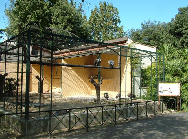 Bioparco в Риме