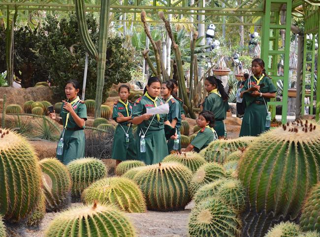 nong-nooch-tropical-garden18