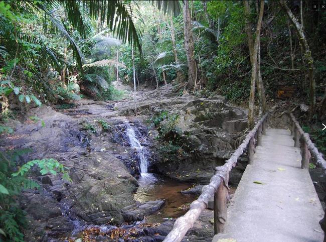 На территории парка Khao Phanom